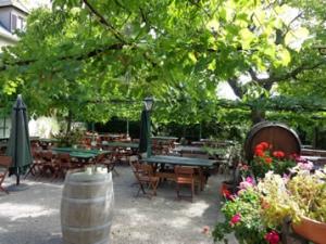 local wine garden vienna