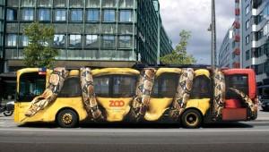 transit snake
