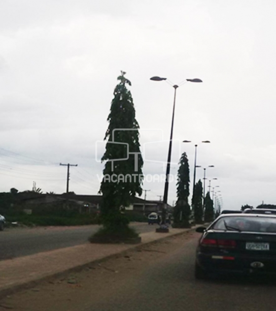 Lamp Post – Pti Road Warri, Delta
